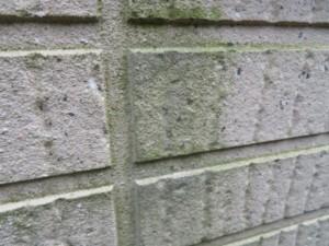 深谷市 外壁塗装