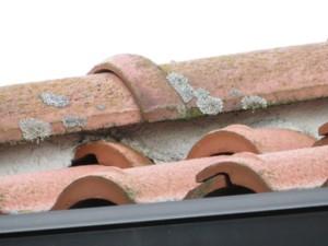 屋根塗装 東松山市