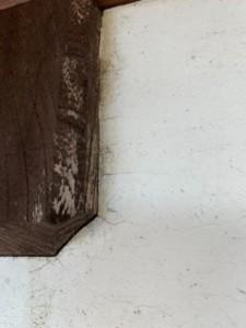 外壁塗装 鴻巣