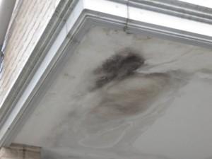 さいたま市 外壁 屋根 塗装 フッ素