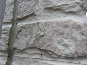 さいたま市 外壁塗装 フッ素