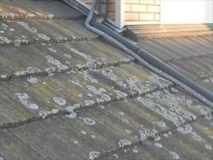 屋根塗装 耐用年数