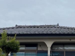 埼玉県熊谷市 屋根 漆喰補修