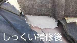 埼玉県羽生市 屋根塗装