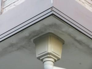 埼玉県鴻巣市 外壁塗装