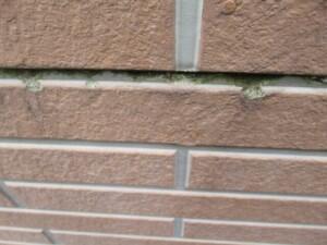 埼玉県熊谷市 外壁塗装 フッ素